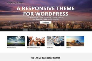 wordpress theme pic